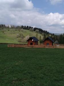 Domki na Zagroniu
