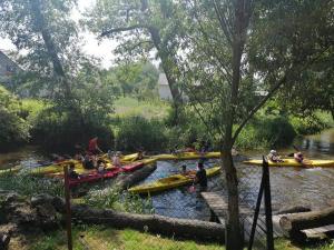 Domki i pokoje nad rzeką Wieprz