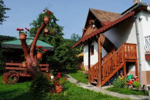 Auberges de jeunesse - Pensiunea Casa Butnarului