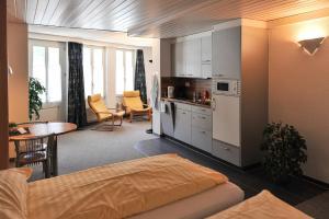 Oberland - Apartment - Lauterbrunnen