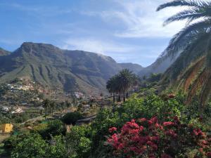 Finca La Ladera, Valle Gran Rey - La Gomera - La Gomera