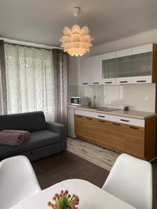 Apartament u Gogoca II