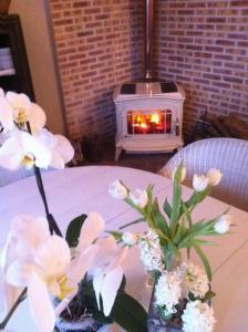 La Maison de la Plage - La Cerisaie, B&B (nocľahy s raňajkami)  Honfleur - big - 8