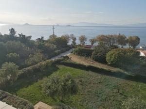 Villa Waterfront Aegina Greece