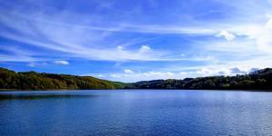 Les Fées du lac ***