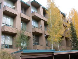 Homestake Condos - Apartment - Vail