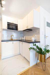 Apartament Oławska