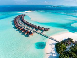 Anantara Dhigu Maldives Resort (3 of 41)