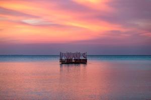 Anantara Dhigu Maldives Resort (9 of 41)