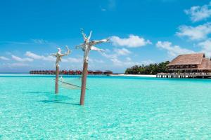 Anantara Dhigu Maldives Resort (2 of 41)