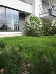 Apartamenty Rodzinne z ogródkiem