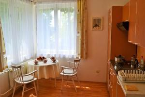 Vila Daniela - Apartment - Karlovy Vary