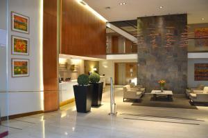 Hotel Director Vitacura, Hotely  Santiago - big - 68