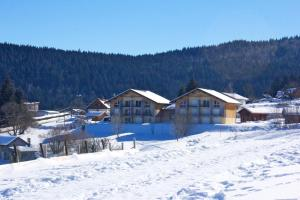 Apartment with 2 bedrooms in XonruptLongemer 10 km from the slopes - Hotel - Xonrupt-Longemer