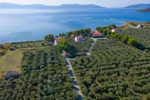 Makis Inn Resort Argolida Greece