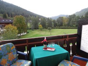 Schwarzwaldhaus am Kurpark - Enzklösterle