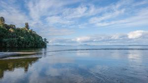 Tongariro Adventures - Accommodation - Kuratau