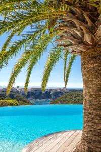 Location gîte, chambres d'hotes Hôtel Cala di Greco dans le département Corse du Sud 2a