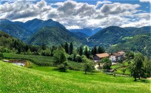 obrázek - Koflhof Urlaub auf dem Bauernhof