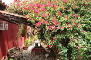 Holiday home Calle Castillo - 2