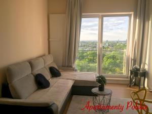 Apartment in Sky