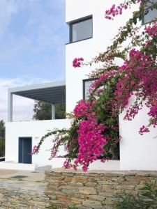Blue Frames Summer House Andros Greece