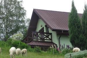 Makowy Dom