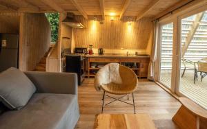 Termas de Aguas Calientes - Hotel - Puyehue