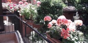 Gioia Bed and Breakfast - abcRoma.com