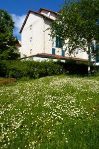 Auberges de jeunesse - Comfort Hotel Strasbourg - Montagne Verte