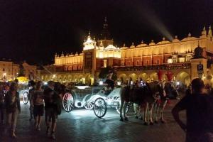 Oaza w sercu Krakowa
