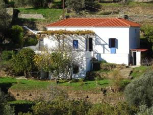 ANDROS MENITES Andros Greece