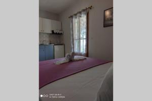 Iason studio 3 Alonissos Greece