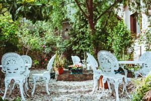 Pensiunea Danieli - Hotel - Eftimie Murgu