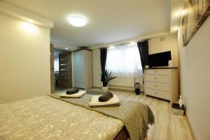 Apartament VENTO
