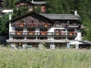 La Madonnina Del Gran Paradiso - Hotel - Cogne