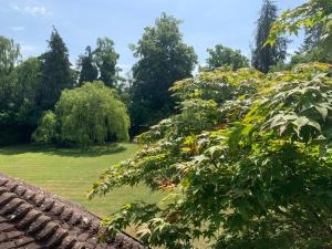 Badgemore Park, Bed and breakfasts  Henley on Thames - big - 64