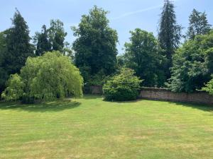 Badgemore Park, Bed and breakfasts  Henley on Thames - big - 5