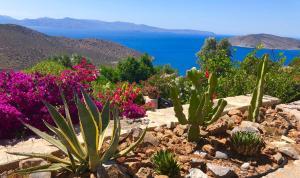 Luxus Tholos Bay