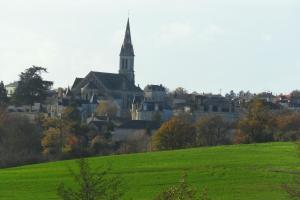 La Villa du Haut Layon, Bed and Breakfasts  Nueil-sur-Layon - big - 14