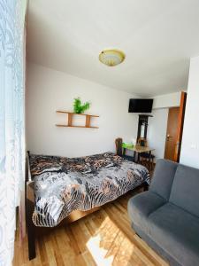 Pokoje i apartamenty Aga Centrum
