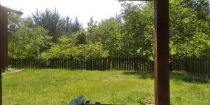 Białowieża Spanie na sianie Puszcza Białowieska