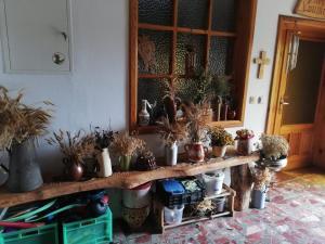 Biohof Am TurawaSee