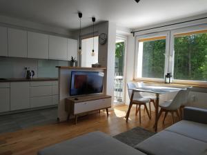 Apartament Śródmieście