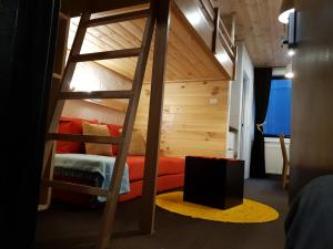 Cosy Apartment Tara Edelweiss at Skiing Resort of Falls Creek