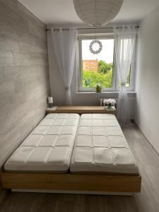 Przytulne mieszkanie 2 pokojowe