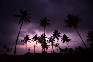 Sri Sharavi Beach Villas & Spa (31 of 68)