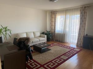 obrázek - Apartament 2 camere