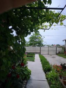 Casa Vera, Дома для отпуска  Журиловка - big - 8