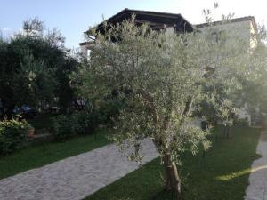 Appartamento Orto degli Ulivi (IUN Q0393)
